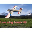 Low Wing Trainer 60